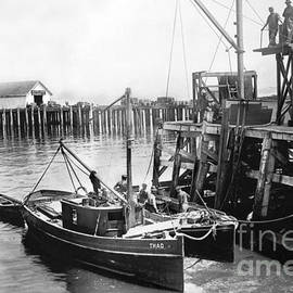 Fishing boat Thad and it's lighter at Booth Cannery Wharf Monterey circa 1915 by California Views Archives Mr Pat Hathaway Archives