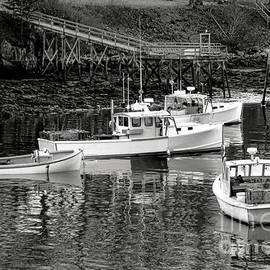 Fishing Boats in Maine Port - Olivier Le Queinec