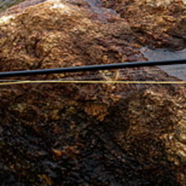Fishing by Bob Orsillo