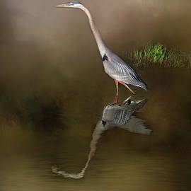 Donna Kennedy - Fishing In the Fog