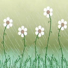 Rosalie Scanlon - Five Days of Daisies