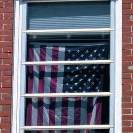 Rosalie Scanlon - Flag in the Window