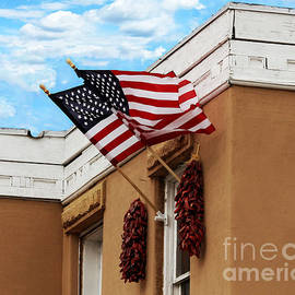Catherine Sherman - Flags Flying in Albuquerque