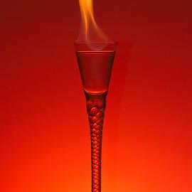 Flaming Hot by Gert Lavsen