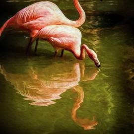 Flamingo Sipping Couple by Alice Gipson