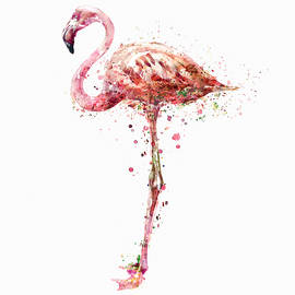Flamingo Watercolor Painting by Marian Voicu