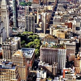 Flatiron Building From Above - New York City