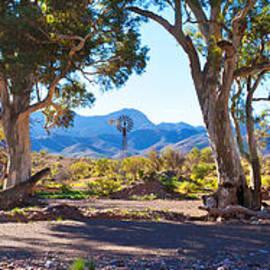 Bill  Robinson - Flinders Ranges Windmill