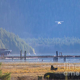 Stanza Widen - Float Plane Take Off