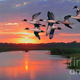 Flock of Pintail Ducks by Walter Colvin
