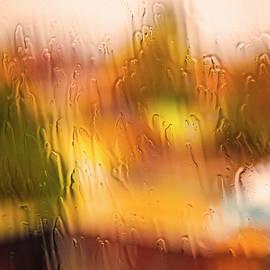 Nancy Marie Ricketts - Flood  Filter