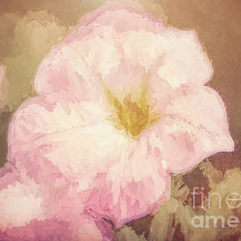Floral 18 by Andrea Anderegg