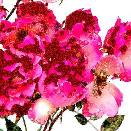 Catherine Lott - Floral Abstract Visual