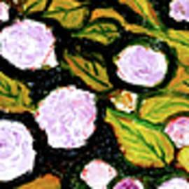 Anand Swaroop Manchiraju - Floral Fantasy