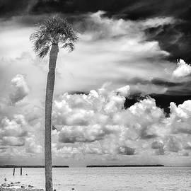 Rudy Umans - Florida Bay 6943BW