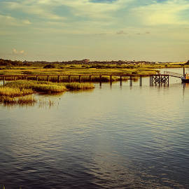 Joan Carroll - Florida Morning
