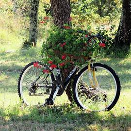 Vesna Martinjak - Flower Bicycle