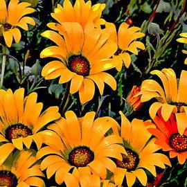 Glenn McCarthy - Flower Power 2