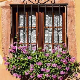 Paul MAURICE - Flowered window # II