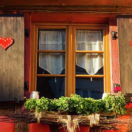 Paul MAURICE - Flowered window # IV