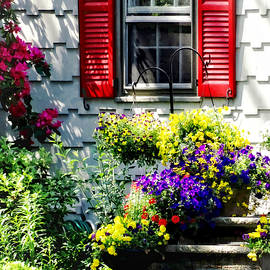 Susan Savad - Flowers and Red Shutters