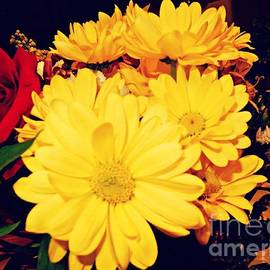 Flowers For My Baby by Diamante Lavendar