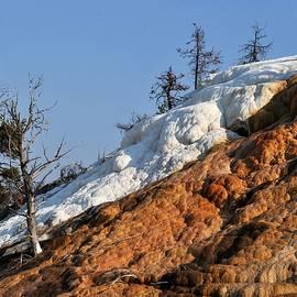 Heidi Fickinger - Flowing Stone Falls Mammoth Hot Springs