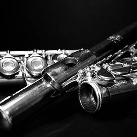 Flute Series I by Lauren Radke