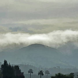 Linda Brody - Fog Bank in the Morning Painterly II