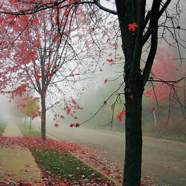 Karen Majkrzak - Fog on a November Morning