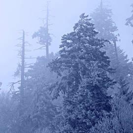 John Stephens - Fog On The Mountain