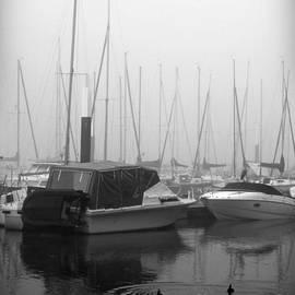 Fog on the Rhine 2 Grayscale by Sarah Loft