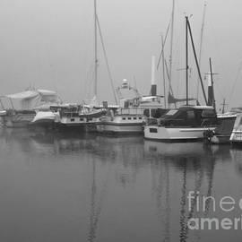 Fog on the Rhine  Grayscale by Sarah Loft