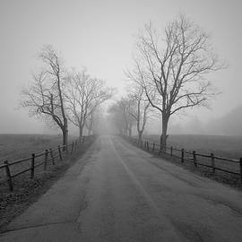 David Gordon - Foggy Afternoon I BW