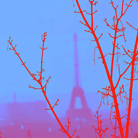 Foggy Blue and Red by Edna Weber