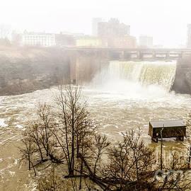 William Norton - Foggy Falls