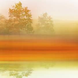 Foggy Meadow Dreamscape by Debra and Dave Vanderlaan