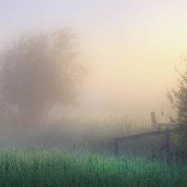 Foggy Morning - Dan Jurak
