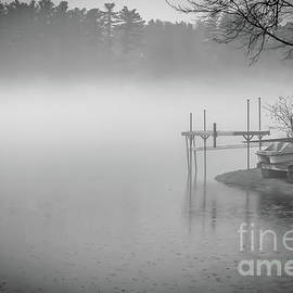 Foggy morning in monochrome by Claudia M Photography