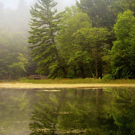 Christina Rollo - Foggy Morning Lake Reflection