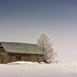 Jukka Heinovirta - Foggy Morning On The Fields