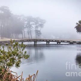 Michelle Tinger - Foggy Pond