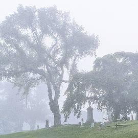 Marty Saccone - Foggy Resting Place