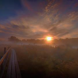 Foggy Sun #g6 by Leif Sohlman
