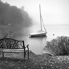 Foggy Tranquility by Betsy Zimmerli