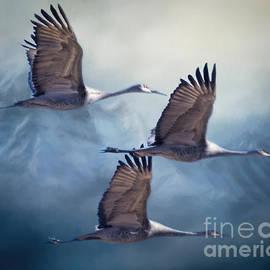 Janice Rae Pariza - Foggy Winter Mountain Cranes