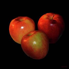 Lesa Fine - Food Art Apples on Black