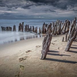 Randall Nyhof - Footprints and Pilings on the Beach