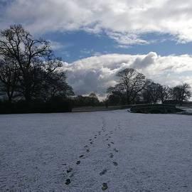 John S - Footsteps | Charlecote