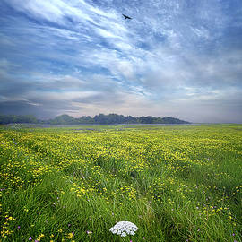 For We Are All One In Spirit - Phil Koch